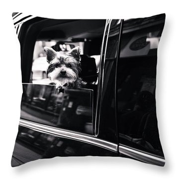 Travelling In Style Throw Pillow