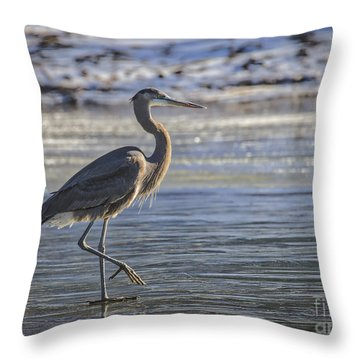 Throw Pillow featuring the photograph Tread Lightly by Mitch Shindelbower