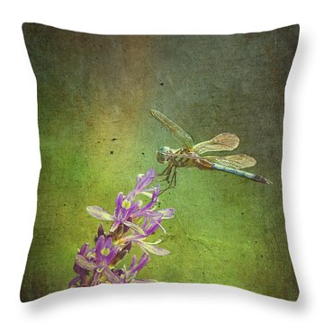 Treading Lightly Throw Pillow by Patricia Griffin Brett