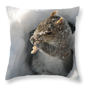 Treasure Found Throw Pillow