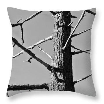 Tree Ancestor Throw Pillow