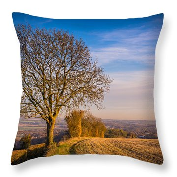 Throw Pillow featuring the photograph Tree And Fields by Gary Gillette