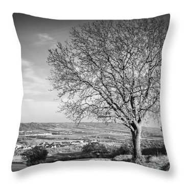 Throw Pillow featuring the photograph Tree And Landscape by Gary Gillette