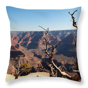 Tree At Grand Canyon Throw Pillow
