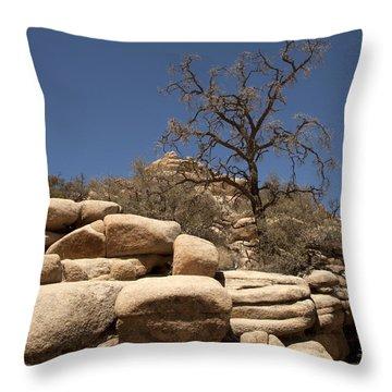 Tree At Joshua Tree Throw Pillow by Amanda Barcon