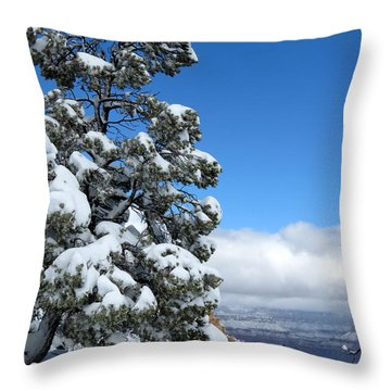 Throw Pillow featuring the photograph Tree At The Grand Canyon by Laurel Powell