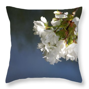 Throw Pillow featuring the photograph Tree Blossoms by Marilyn Wilson