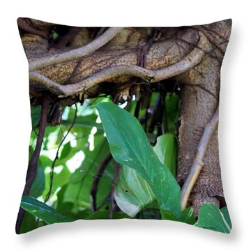 Throw Pillow featuring the photograph Tree Branch by Rafael Salazar