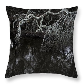 Tree Branches Mirrored In Stream Throw Pillow
