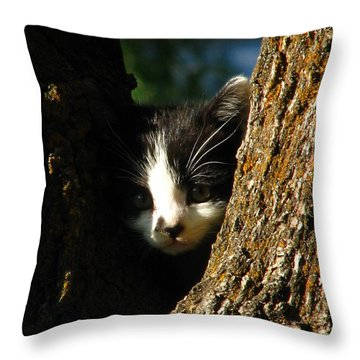 Tree Cat Throw Pillow by Greg Patzer