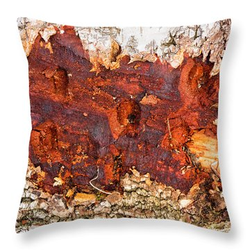 Tree Closeup - Wood Texture Throw Pillow