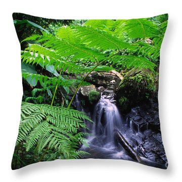 Tree Fern And Waterfall Throw Pillow by Thomas R Fletcher