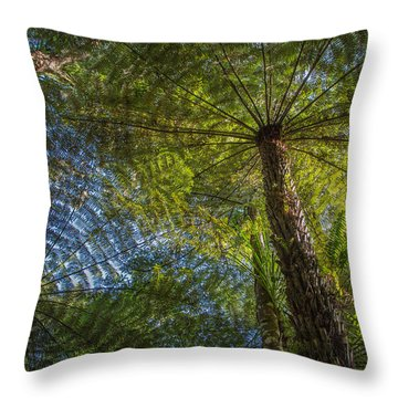 Tree Ferns From Below Throw Pillow