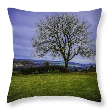 Tree - Hadrian's Wall Throw Pillow by Mary Carol Story