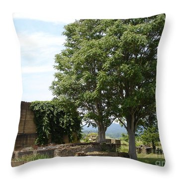 Throw Pillow featuring the photograph Tree House by Jane Ford