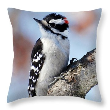 Tree Huggin' Nut Lover Throw Pillow by Christina Rollo