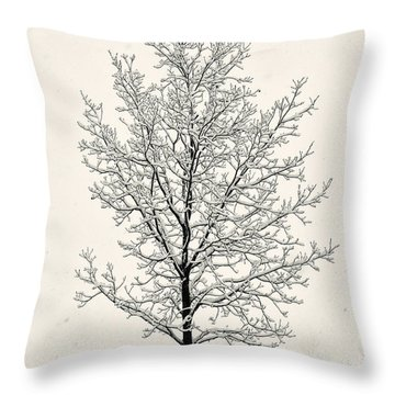 Tree In Heavy Snow Throw Pillow by Joseph Duba