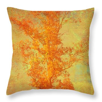 Tree In Sunlight Throw Pillow by Suzanne Powers