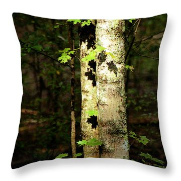 Tree In The Woods Throw Pillow by Pamela Critchlow