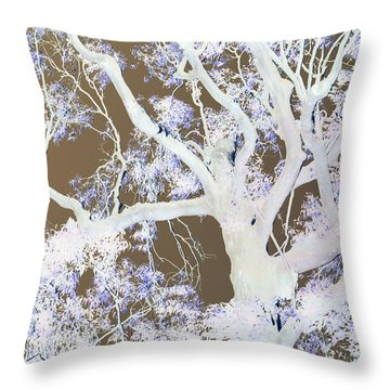 Throw Pillow featuring the photograph Tree Inversion by Cassandra Buckley