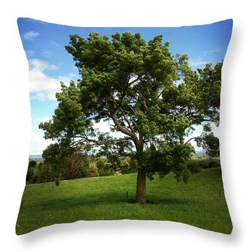 Tree Throw Pillow by Les Cunliffe