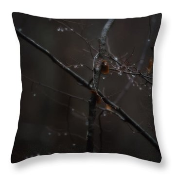 Tree Limb With Rain Drops 2 Throw Pillow by J Riley Johnson