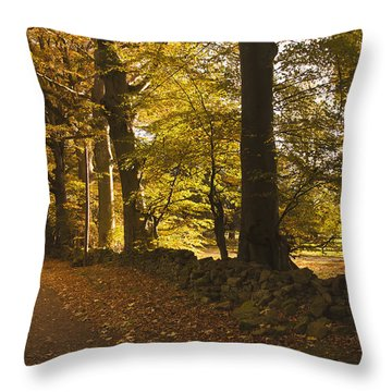Tree Lined Road Covered With Fallen Throw Pillow by John Short