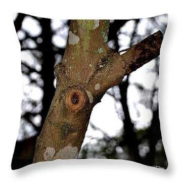 Throw Pillow featuring the photograph Tree Observation by Tara Potts