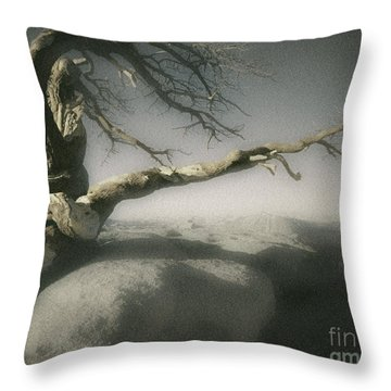 Tree Of Ages Throw Pillow