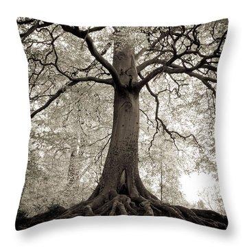 Tree Of Life Throw Pillow by Dominique De Leeuw