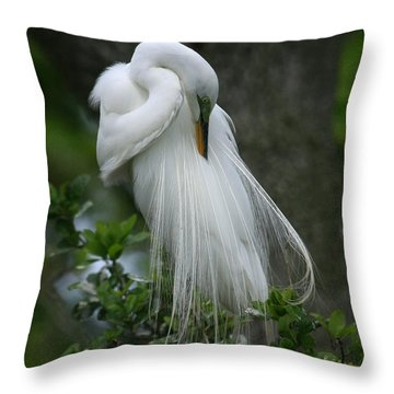 Throw Pillow featuring the photograph Tree Of Plumes by John F Tsumas