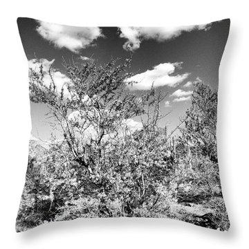 Tree Oh Tree Throw Pillow
