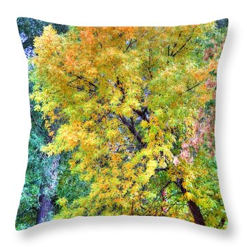 Throw Pillow featuring the photograph Tree On Fountain Creek by Lanita Williams