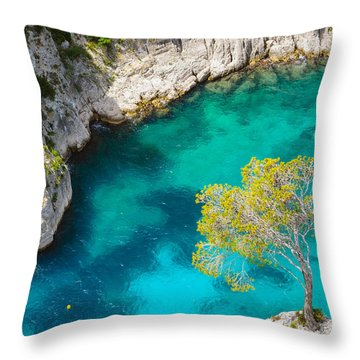 Tree On Turquoise Waters Throw Pillow
