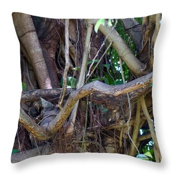 Throw Pillow featuring the photograph Tree by Rafael Salazar