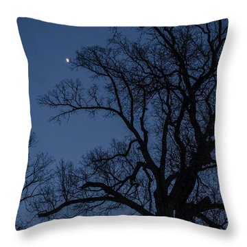 Tree Reaching For The Moon Throw Pillow