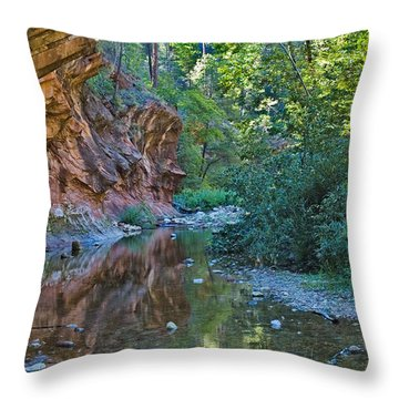 Throw Pillow featuring the photograph Tree Reflection by Mae Wertz