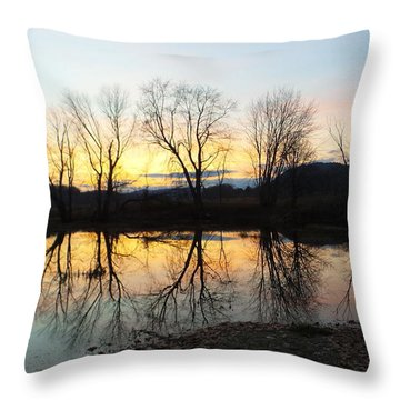 Tree Reflections Landscape Throw Pillow