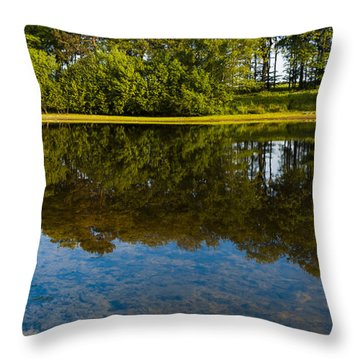 Tree Reflections Throw Pillow by Svetlana Sewell