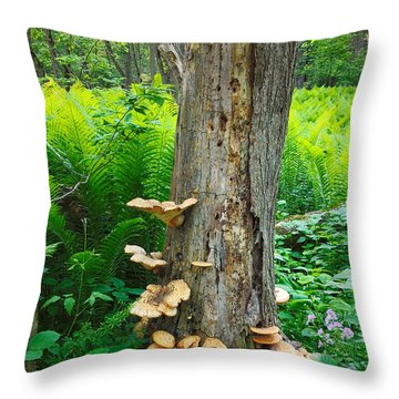 Tree Remnant Throw Pillow