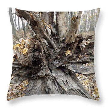 Tree Roots Throw Pillow by Erick Schmidt