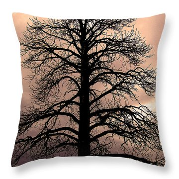 Tree Silhouette Throw Pillow by Laurel Powell