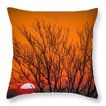Tree Silhouetted By Irish Sunrise Throw Pillow