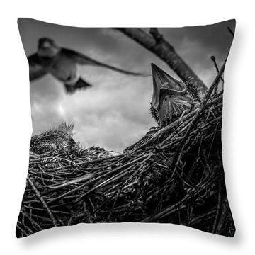 Tree Swallows In Nest Throw Pillow