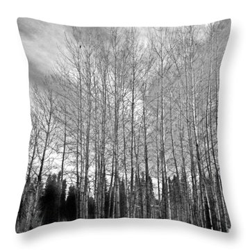 Throw Pillow featuring the photograph Tree Sweep by Tarey Potter