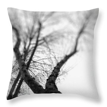 Tree Throw Pillow by Taylan Apukovska
