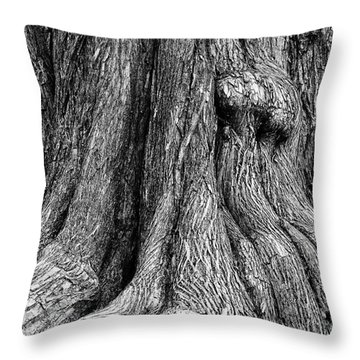 Tree Trunk Closeup Throw Pillow