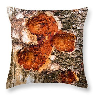 Tree Trunk Closeup - Wooden Structure Throw Pillow by Matthias Hauser