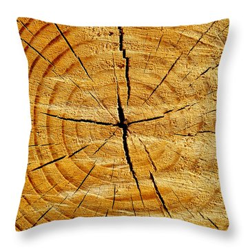 Tree Trunk Throw Pillow by Fabrizio Troiani