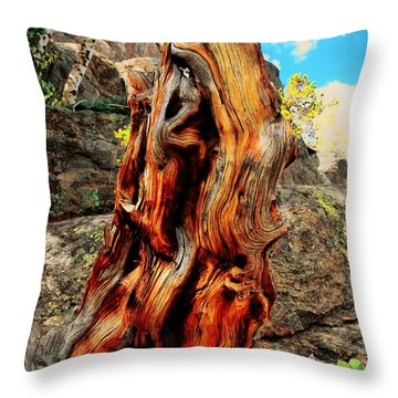 Tree Trunk Throw Pillow by Kathleen Struckle